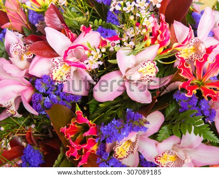 Abstract background flowers, nature pattern - stock photo