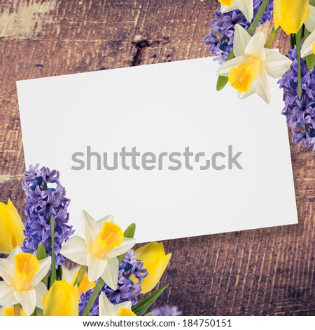 Abstract background for design. Flowers background.