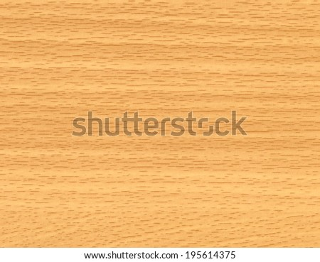 Abstract background from closeup of wood texture. High detailed of the image