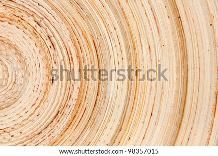 Abstract background like slice of wood timber natural - stock photo