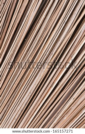 abstract  background of dry coconut leaf