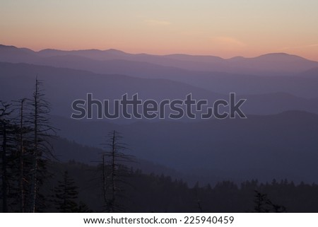 Abstract background of hazy mountain range in the distance, with purple coloring and skeletal trees in foreground
