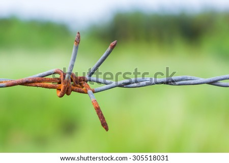 Abstract background of protection, Barbed wire. - stock photo