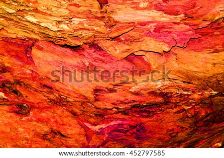 Abstract background of textures,shapes,forms and patterns from nature / Nature background / In different color theme background to expressed their natural beauty