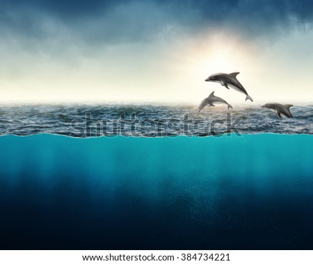 Abstract background with dolphins in ocean - stock photo