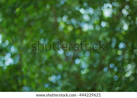 Abstract background with Green Bokeh,Abstract  Green Background  - stock photo