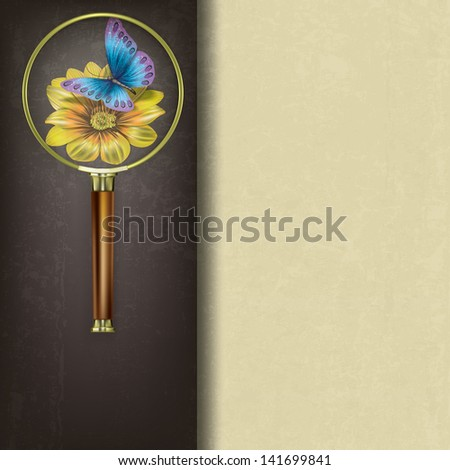 abstract background with magnifying glass and butterfly on flower