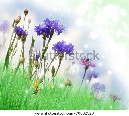 Abstract Background With Summer Flowers On A Field