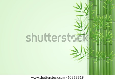 Abstract bamboo background - stock photo