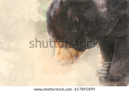 Abstract bear on watercolor painting background, Bear