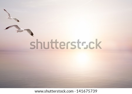 abstract beautiful light  sea summer background - stock photo