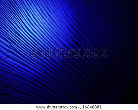 abstract blue light over lamellar fungus surface, unknown science detsils - stock photo