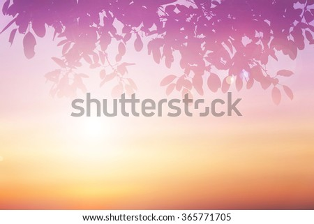 Abstract blur colorful background of blurred colorful sunset sky with silhouette leaf in the foreground. vacation summer. Nature wallpaper of sunset. Orange and purple clouds. - stock photo