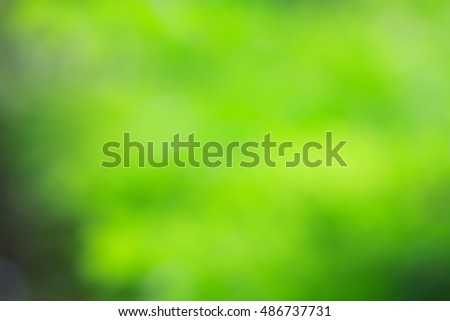 Abstract blur nature green bokeh background.