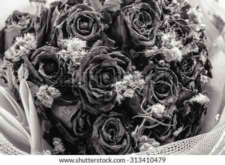 Abstract blurred and retro decoration of dried flowers. Roses, Black and white - stock photo