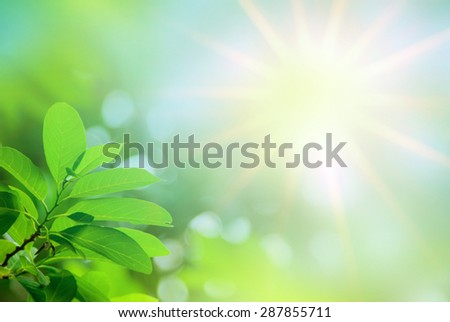 Abstract blurred background with out of focus for design element - stock photo