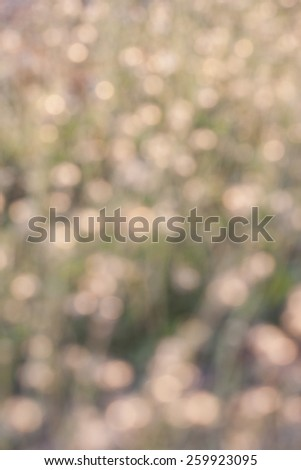 Abstract bokeh and blurred background - stock photo