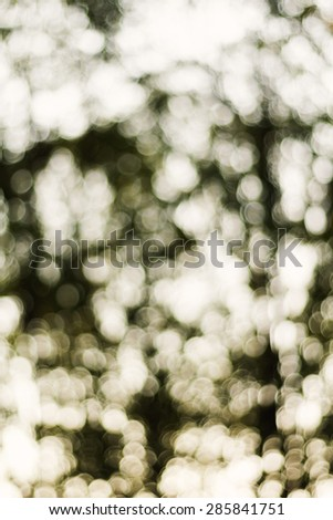Abstract bokeh background.Used film filter.