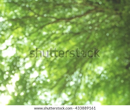 Abstract Bokeh of tree color for background. success support surface topography water world sphere security safety object globe soft park leaf day shiny sunny color green focus grass  plant blur - stock photo