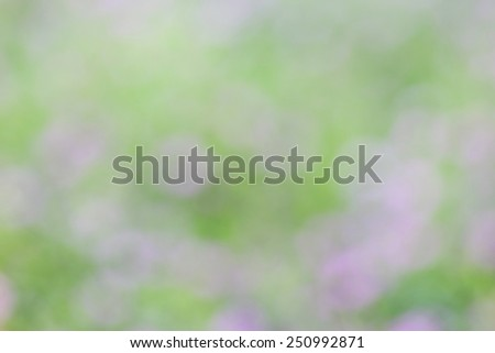 Abstract colorful bokeh, blurred background - stock photo