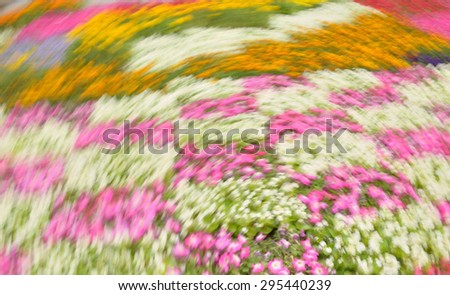 Abstract colorful composition with pink, lilac, yelow  and white strokes effect rotation