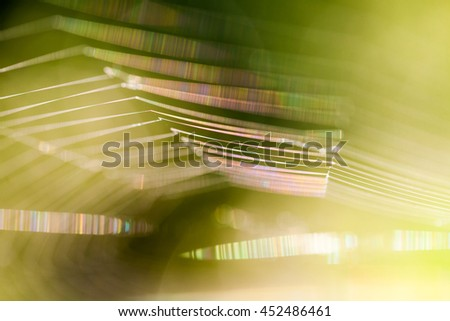 Abstract composition with spider web details and natural colors