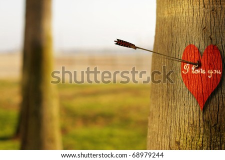 """Abstract concept photograph of an arrow piercing a red heart on tree with phrase """"I Love You"""" - stock photo"""