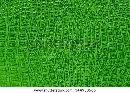Abstract crocodile leather, can use as background - stock photo