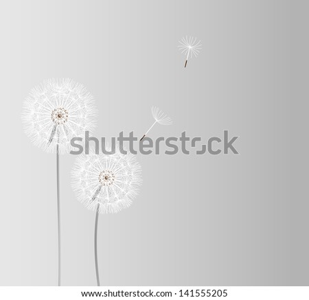 abstract dandelion background   illustration - stock photo