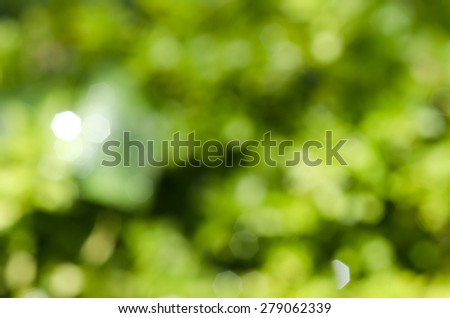 Abstract Dark Green Hexagon and Circle Bokeh Outdoor Under the Tree - Texture Background - stock photo