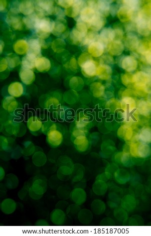 Abstract Defocused Shades of Green Bokeh Background - stock photo