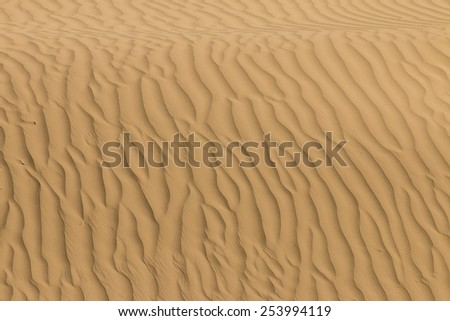 Abstract detail of sand in the dunes