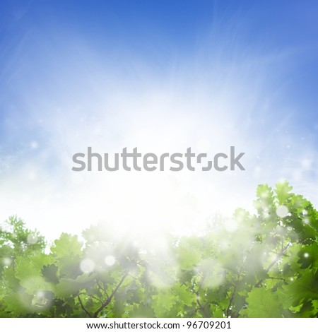 Abstract eco background - green leaves, bright sun, blue sky, solar energy - stock photo