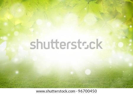 Abstract eco background - green leaves, grass, bright sun - stock photo