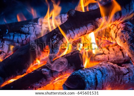 abstract fire on woods in darkness