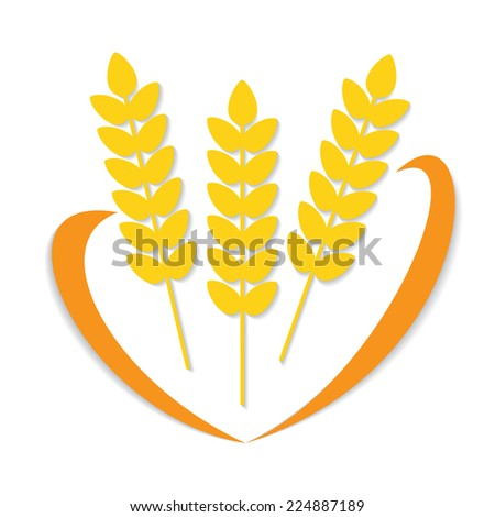 Abstract flat wheat ears on isolated white background with decorative line. Healthy eating  - stock photo