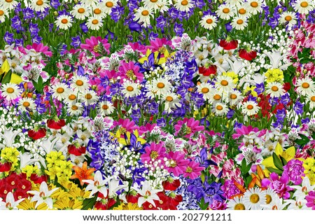 Abstract floral background - stock photo