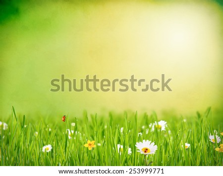 Abstract floral background with free space for text