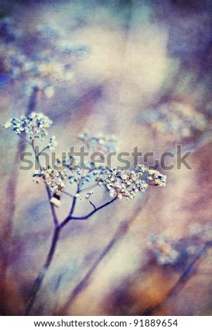 Abstract floral background with soft focus and old paper texture
