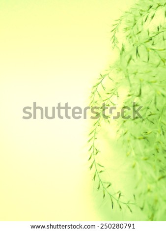 Abstract floral yellow green background texture with copy space. - stock photo