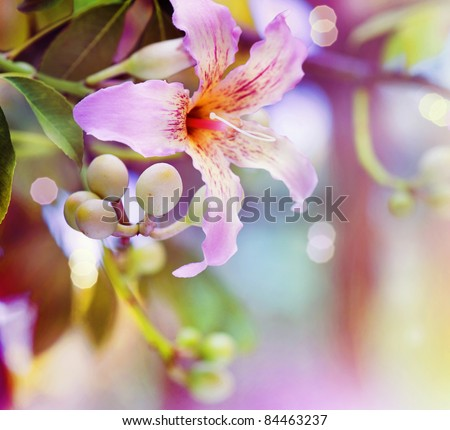 Abstract Flower Design - stock photo