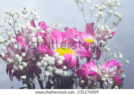 abstract flowers bouquet - stock photo