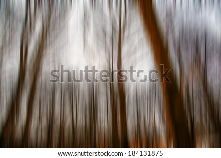 abstract forest in autumn time,motion blur,forest background - stock photo