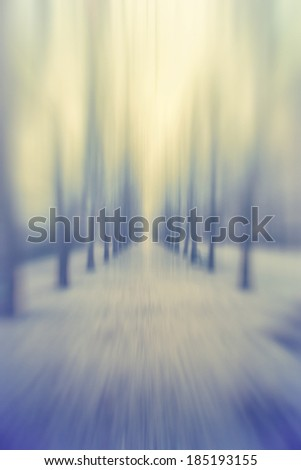 abstract forest in motion blur - stock photo