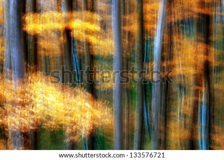 Abstract forest landscape - stock photo
