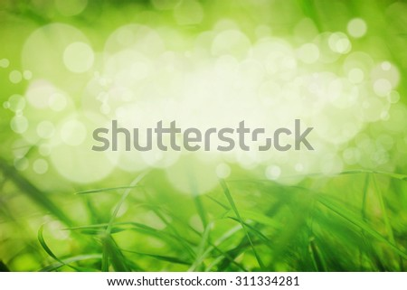 Abstract green blurry background with overlying semitransparent circles, light effects and sun burst. Great spring or green environmental eco background with space for your text.