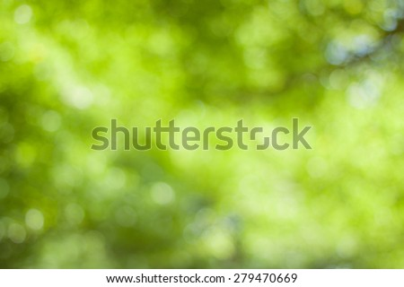 abstract green boke background - stock photo