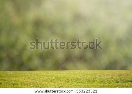 Abstract green grass bokeh - stock photo