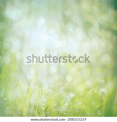 abstract green nature background with blurry bokeh cold glitter lights