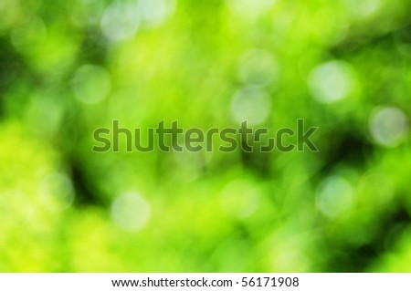abstract green nature bokeh background with copyspace - stock photo